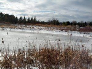 브라이언의 행복한 번역가 블로그 통번역가의 라이프스타일과 일상  캐나다의 겨울 풍경