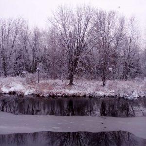 눈이 하도 예쁘게 와서…